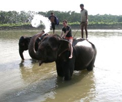 3 Nights 4 Days Chitwan Jungle Safari Package