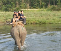 3 Nights 4 Days Bardiya Program