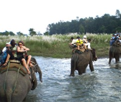 2 Nights 3 Days Jungle Safari Package (Inside)