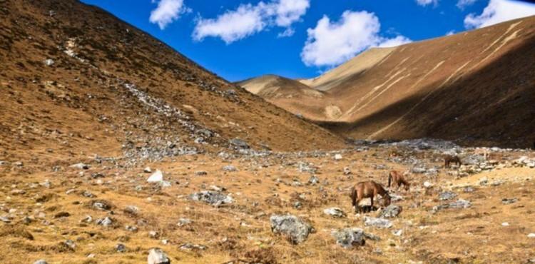 Manaslu Region & Tsum Valley Trekking