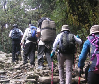 Easy & Short Trekking / Hiking