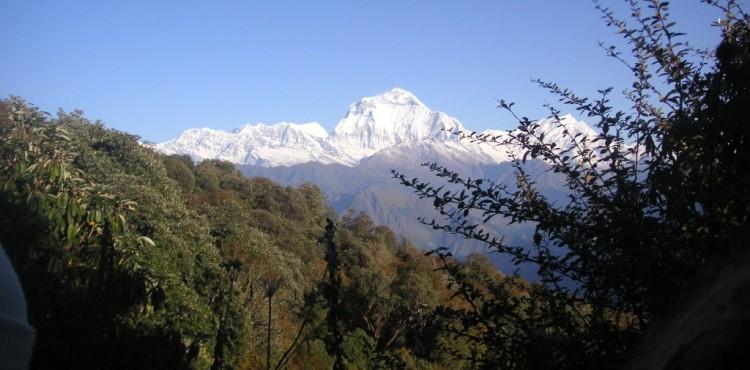 Annapurna Region Trekking & Walking